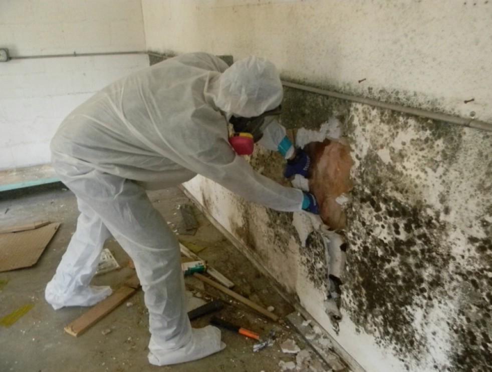 как обработать стены бетоном