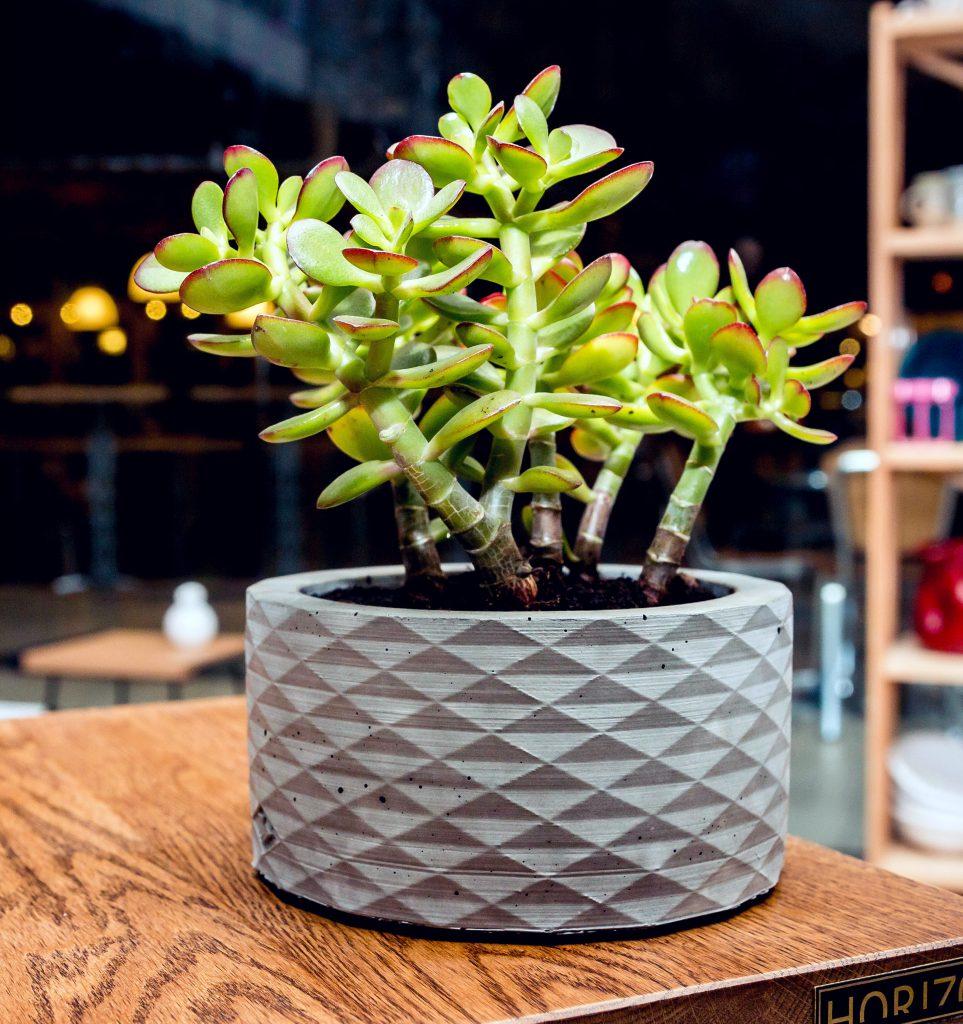 оригинальная форма бетонного вазона