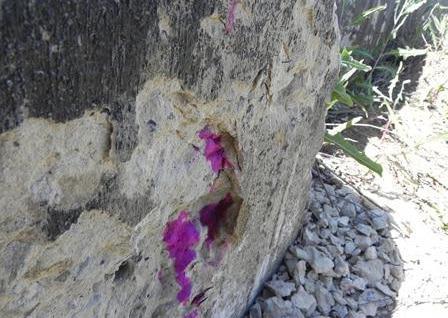 определение карбонизации бетона